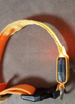 Ошейник для собак с подсветкой размер м, цвет оранжевый. уценка!