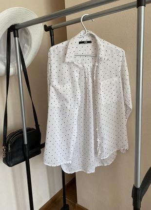 Блузка в чёрную точку.