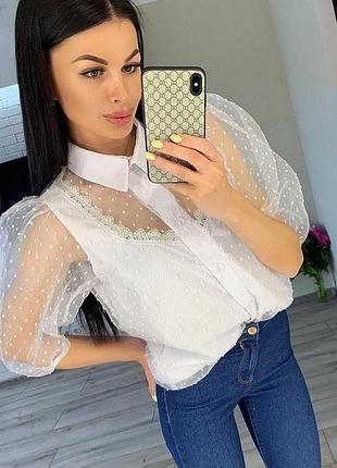 Шикарная блуза блузка органза