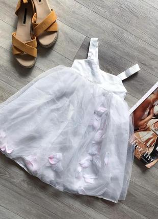 Сукня / платья