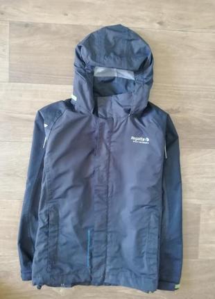 Ветровка, олимпийка, куртка, курточка, дождевик