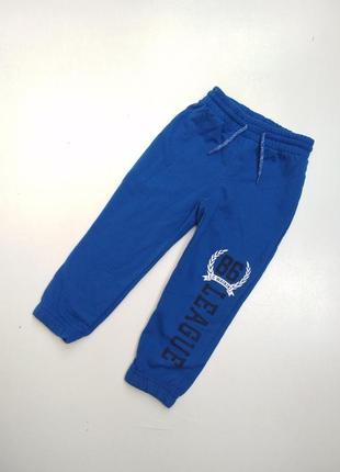 Утеплені сині джогери.