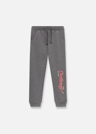 Серые спортивные штаны