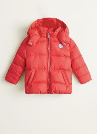 Тёплая куртка демисезонная на флисе с капюшоном1 фото