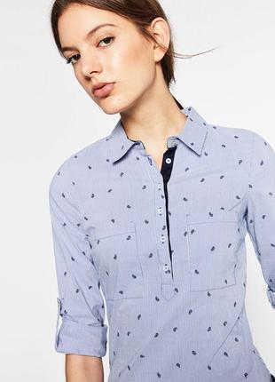Модная поплиновая рубашка в бело - синию полоску zara basic collection made in spain