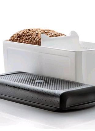Эко хлебница от tapperware.