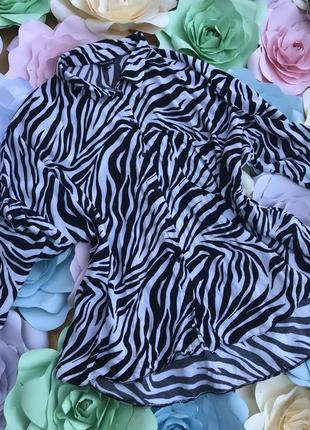 Рубашка с принтом зебры размер 22