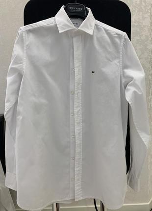 Стильная рубашка lacoster
