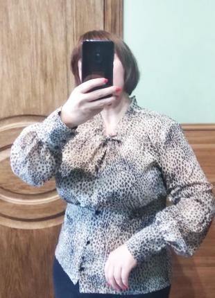 Актуальна блузка в леопардовий принт7 фото