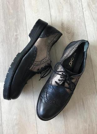 Шкіряні черевики  inuovo / кожаные ботинки