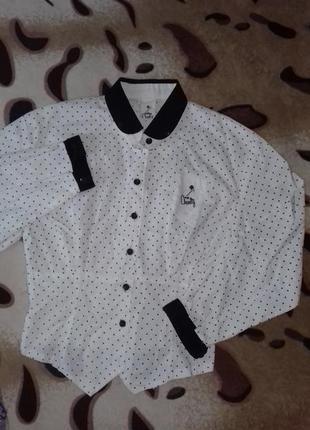 Блуза белая 44