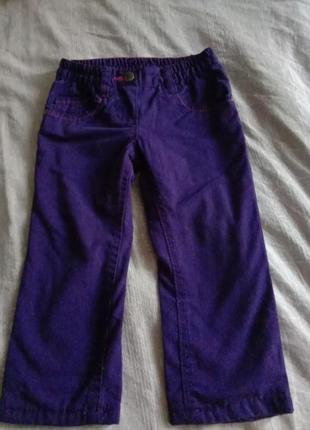 Термо штани деми штаны демисезонные брюки на резинке