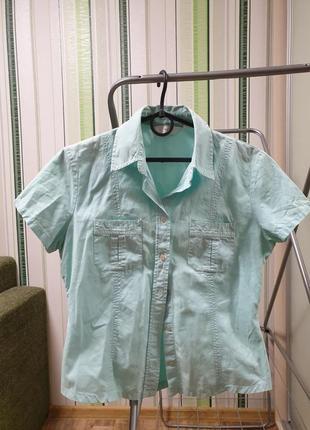 Блуза блузка рубашка голубая цвет голубой next