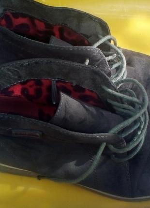 Серые туфли со шнурками