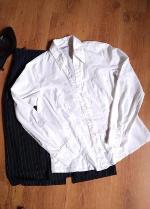 Базовая блуза  35% котон biagginni