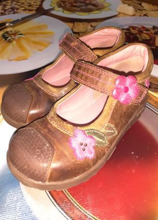 Туфли klarcs