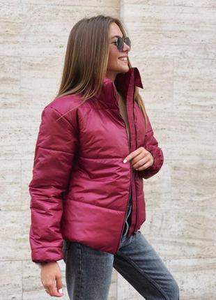 Куртка синтепон бордовая