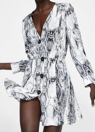 Классное платье. змеинный принт, рептилия