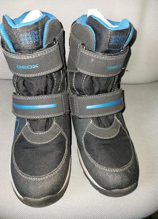 Ботинки , сапоги зимние geox