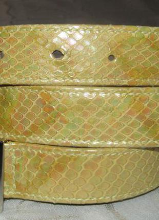 Модный пояс 100 % кожа / escada / италия змея