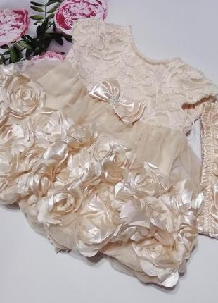 Плаття nannette baby