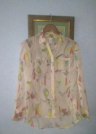 Прозрачная шифоновая рубашка