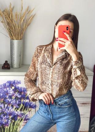 Красивая шифоновая блуза в питоновый принт