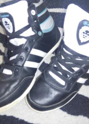 Кросівки restime