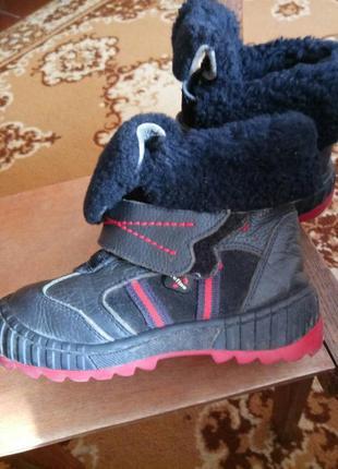 Зимние ботинки сапожки кожаные tofino