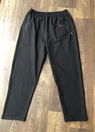 Мужские спортивные штаны батал