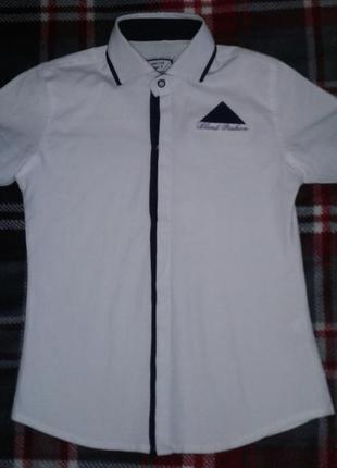 Рубашка белая, короткий рукав, шведка