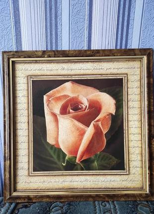 "Картина ""роза"""
