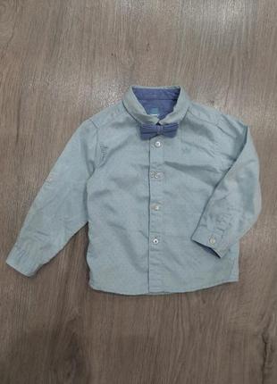 Рубашка с бабочкой waikiki