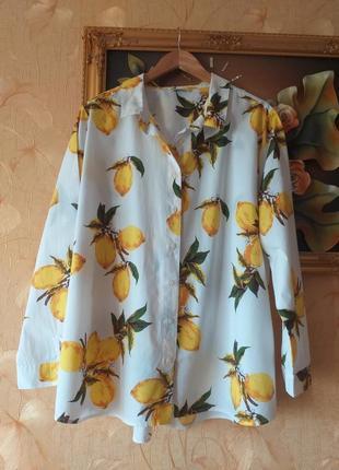Трендова блуза- рубашка. батал