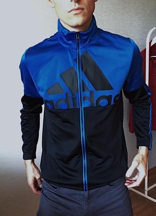 Мужская олимпийка спортивная кофта adidas