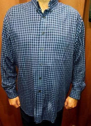 Рубашка мужская 60 и более т.синяя в клетку