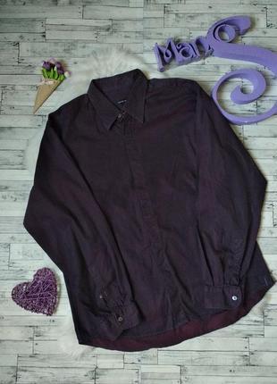 Рубашка armand basi мужская