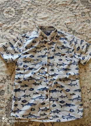 Крутая рубашка, обманка