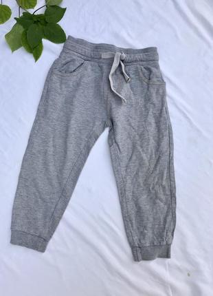 Спортивні штани сірого кольору