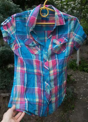 Яркая клетчатая летняя рубаха
