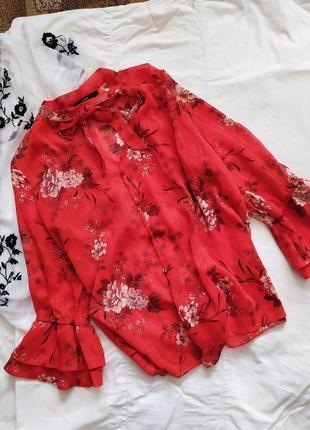 Роскошная блуза / большие размеры / l xl m / блузка / воланы рюши тренд / рубашка