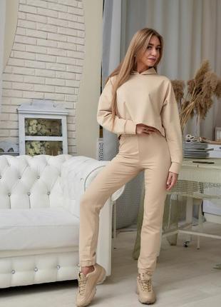 Стильный костюм брюки штаны и кофта худи свитшот
