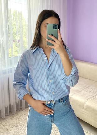 Голубая базовая актуальная полосатая рубашка