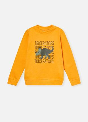 Кофта свитер пуловер свитшот джемпер пайта батник бомбер2 фото
