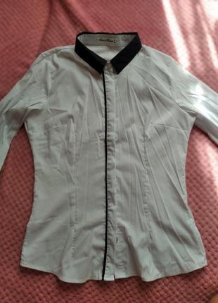 Рубашка блуза белая