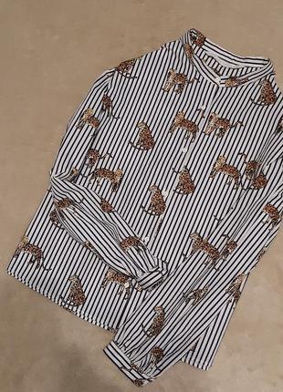 Рубашка полоска хлопок в леопардах принт свободный стиль объёмный рукав размер 10 от zara
