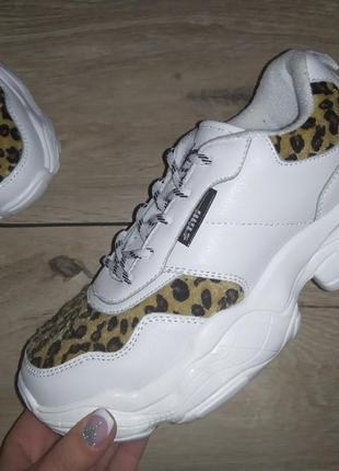 Осенние 🌿 кроссовки stilli женские платформа плотные леопард