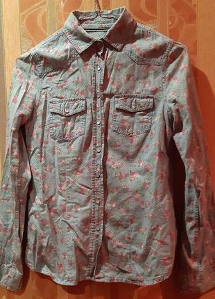Рубашка жіноча colins