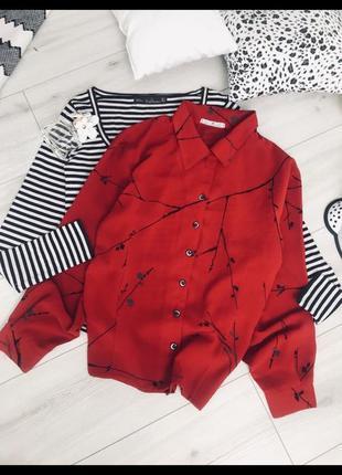 Актуальная блуза блюзка рубашка сорочка брендовая