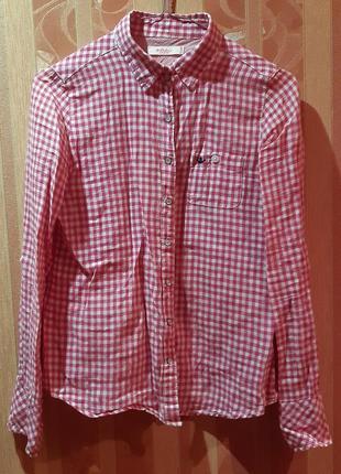 Рубашка діноча colins